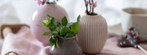 Vasen & Windlichter